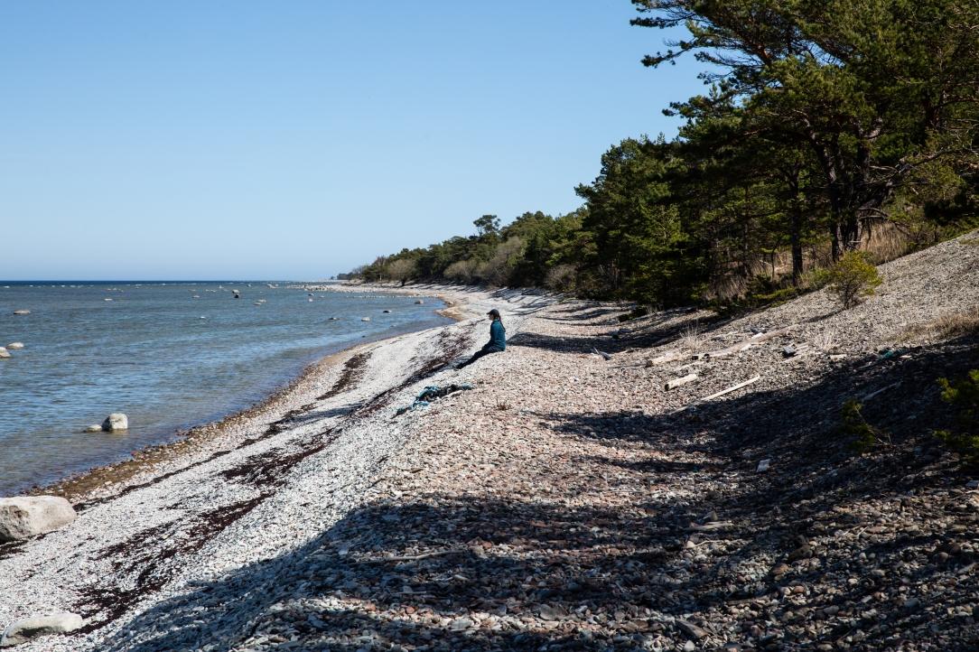 2018-05-04, Landskapsvandringar, Gotland. Fredagen den 4 maj 2018 besökte Kronprinsessan Gotland för att genomföra sin åttonde vandring i Sveriges landskap. Vandringen genomfördes på den nordvästra delen av ön. Turen startade vid Harviken, gick ge